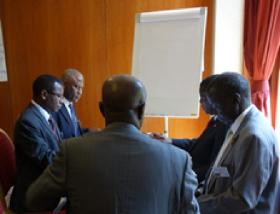 Africa Cabinet Decision-Making Programme